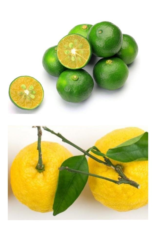 沖縄産 無農薬 シークァーサーand高知産 無農薬 柚子