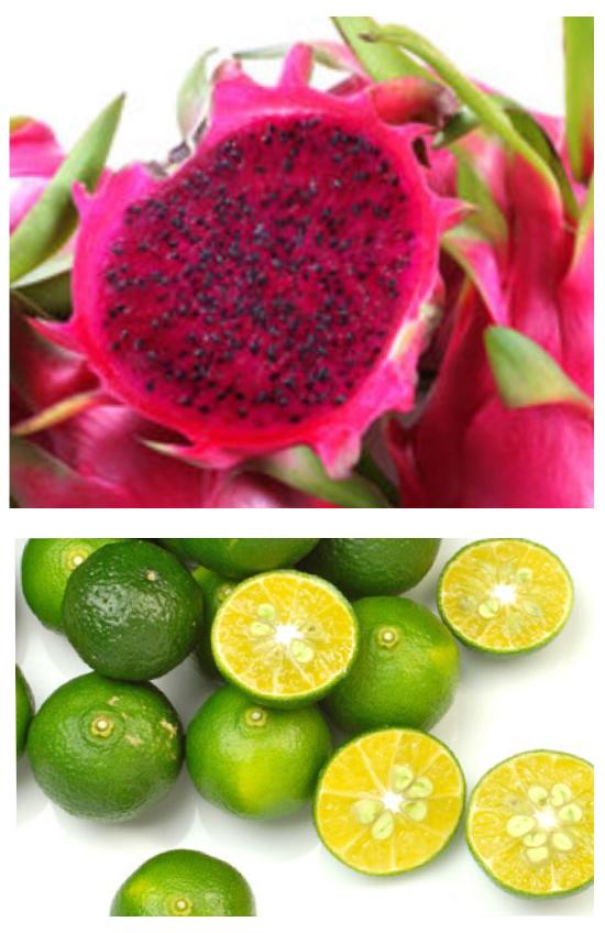 シークァーサー ピンクドラゴンフルーツの酵素 ピンクの杏仁豆腐作り