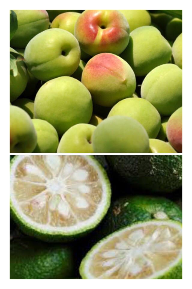 無農薬 梅と柚子のフルーツ酵素&柚子アロマのバスソルト