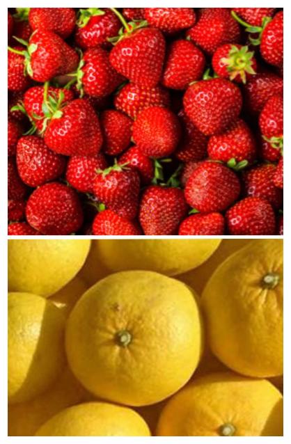 2月フルーツ酵素
