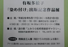 _20170411_214523.JPG