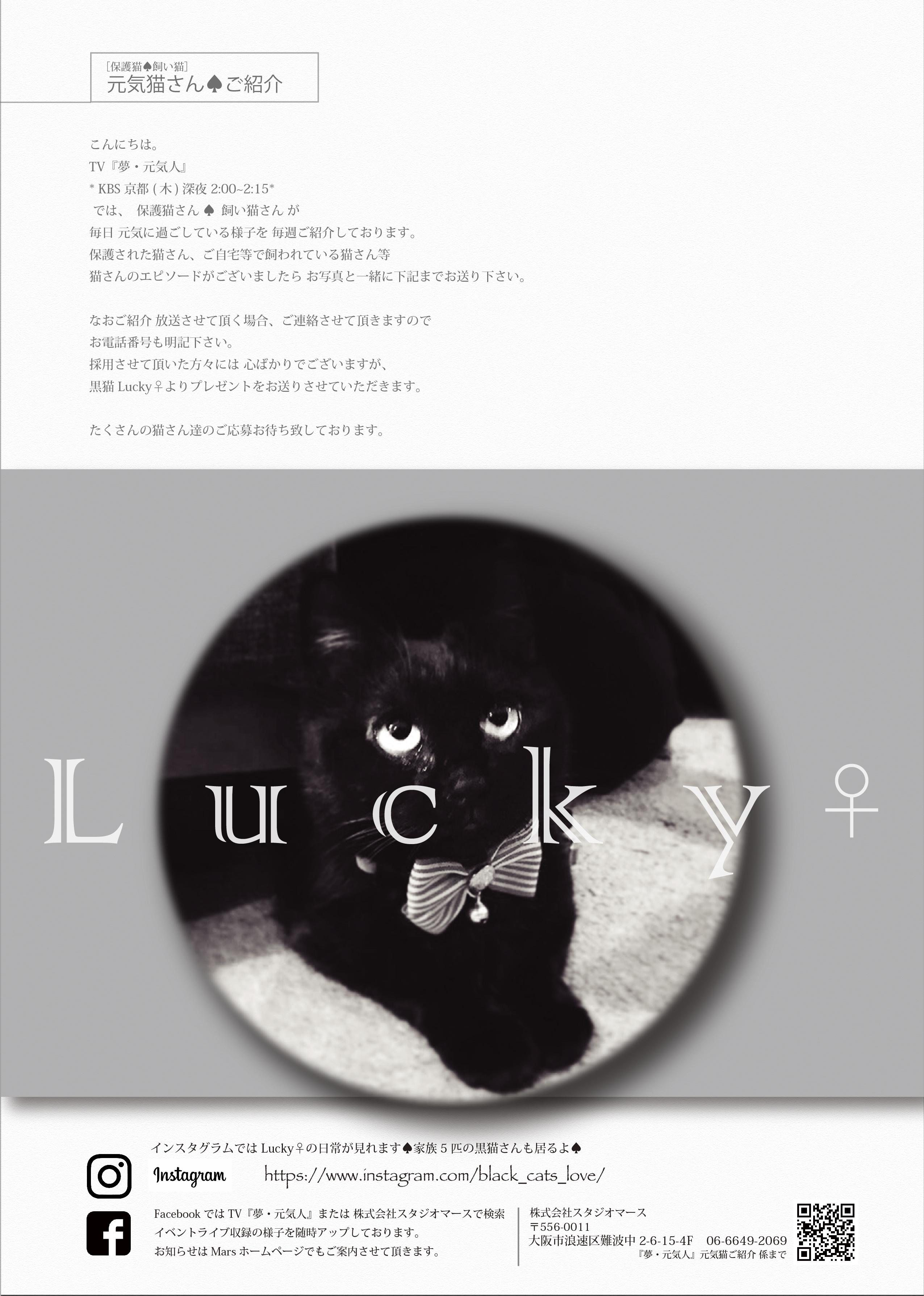 lucky-yumegennki-01.jpg
