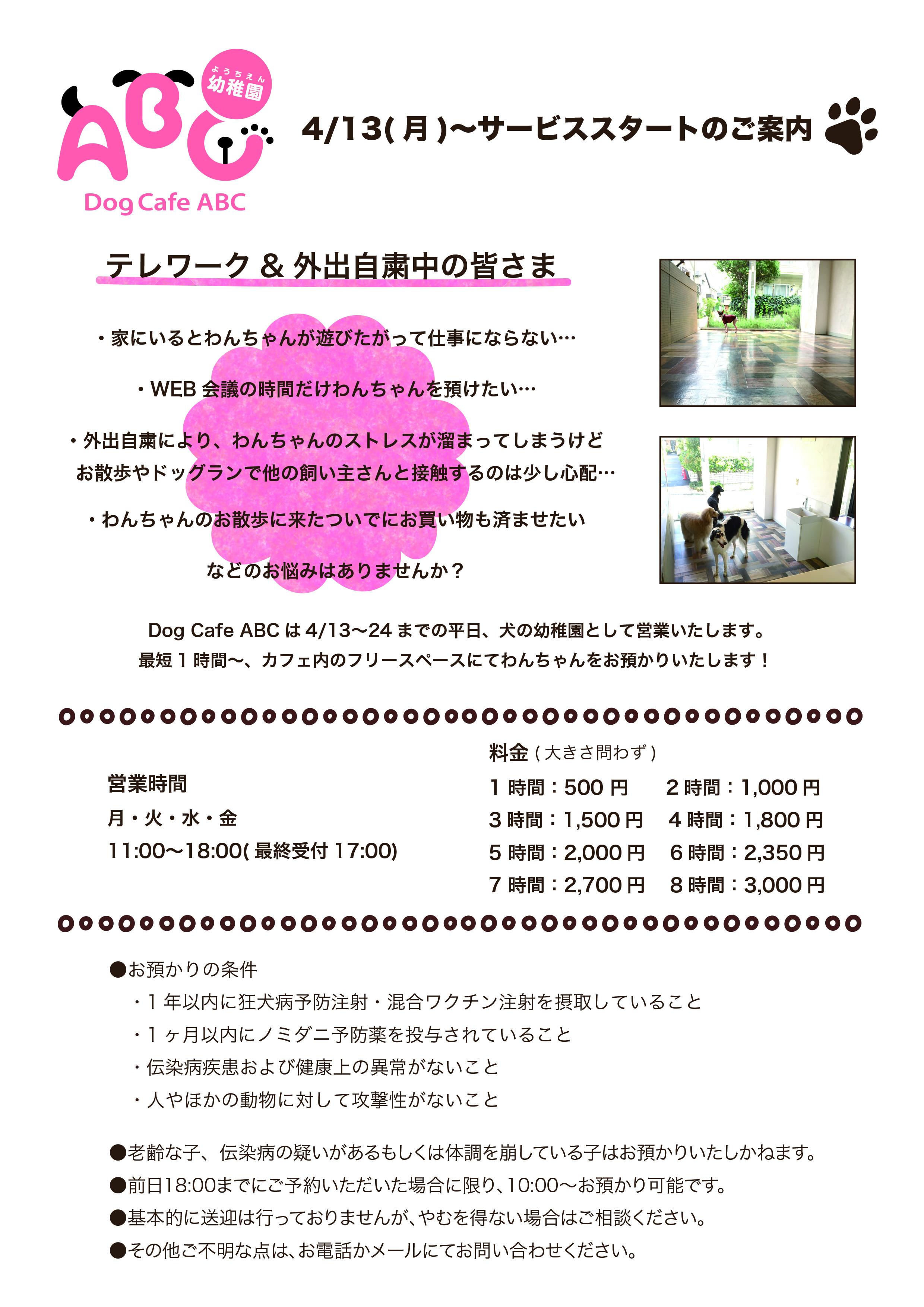 幼稚園掲示用.jpg