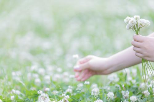花摘み.jpg