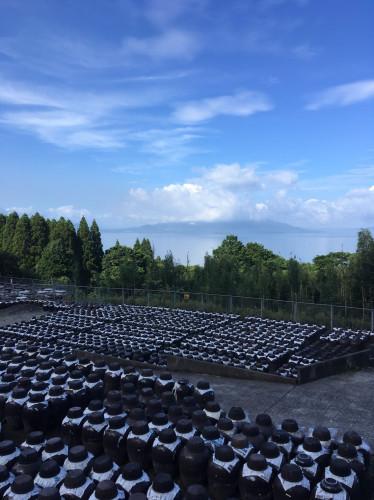 甕酢(黒酢)畑20200812-3.jpg