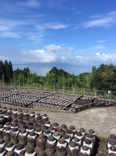 甕酢(黒酢)畑20200812-2.jpg