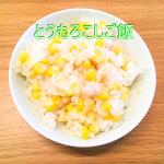 1年熟成甕酢・黒酢とうもろこしご飯ー2.jpg