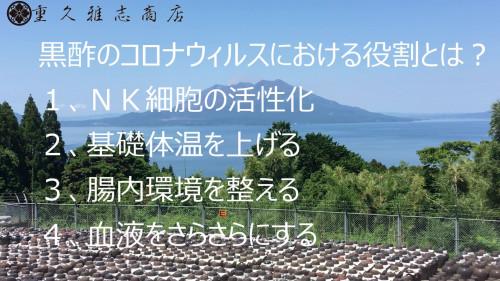 3、黒酢(甕酢)のコロナウィルスにおける役割とは?.jpg