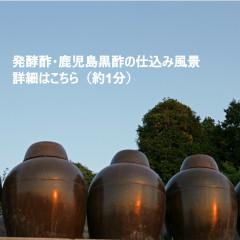 発酵酢の仕込み動画1.jpg