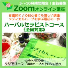 HT-zoom2020小.png