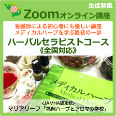 HT-zoom-2-2020小.png