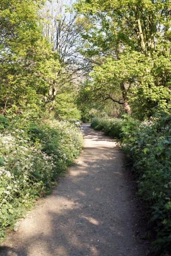 karui_Yukihito-Kono_Parkland-Walk_2.jpg