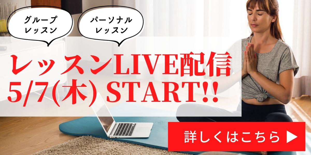 YARD LIVE配信