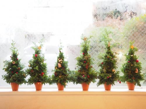 クリスマスツリー2018.jpg