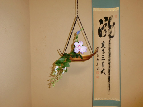 茶花 天井.JPG