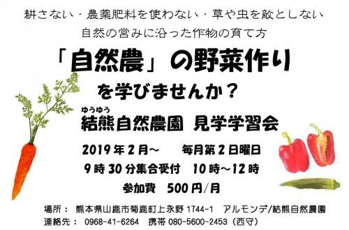 (野菜)見学学習会パンフレット2019.jpg