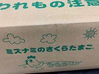 卵箱.jpg