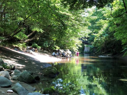 木の俣渓流2.png