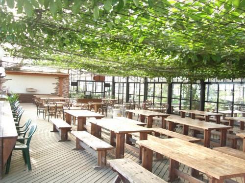 大多喜ハーブガーデンのドッグカフェ:テラス席の全体イメージ