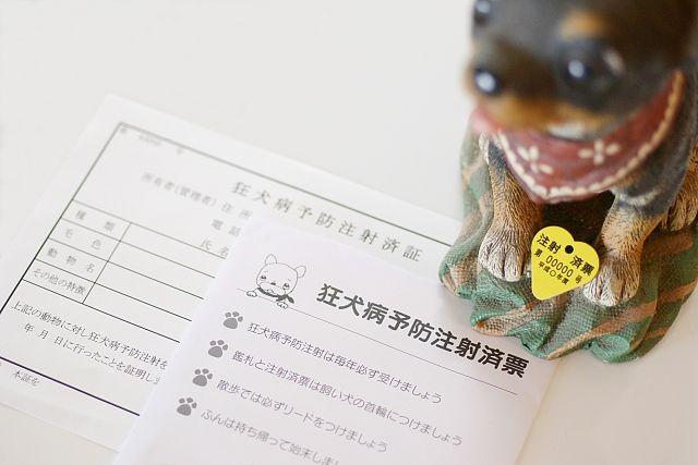 ドッグランを利用する際には、狂犬病予防注射済票をお忘れなく!