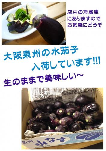 水茄子.jpg
