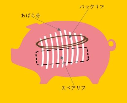 Sバックリブ図.jpg