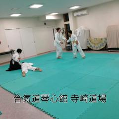 鈴蘭台6.3.2019大人①.jpg