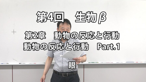 生物β4-1.jpg