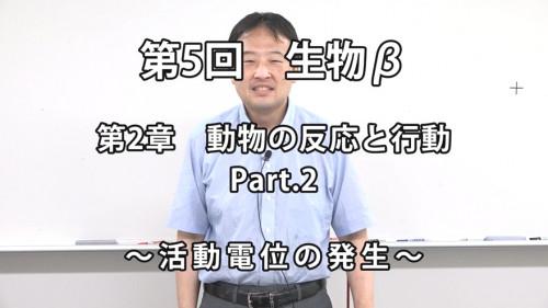 生物β5-1.jpg