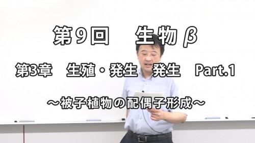 生物β9-1.jpg