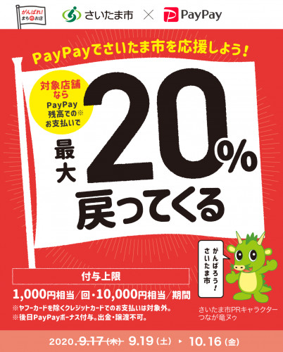 PayPay20%.png