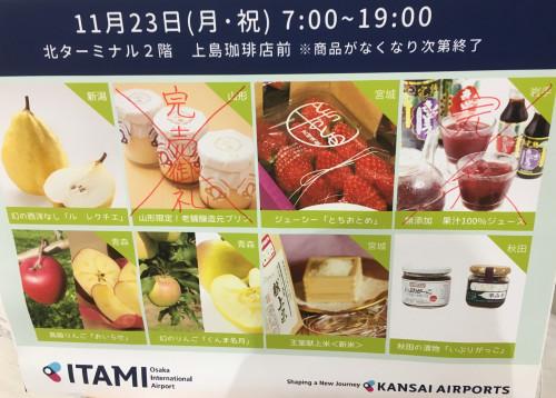 J-AIR空の市写真(案内).jpg