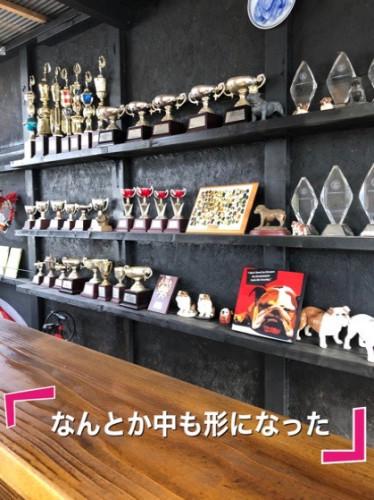 fc2blog_20200105070019eda.jpg