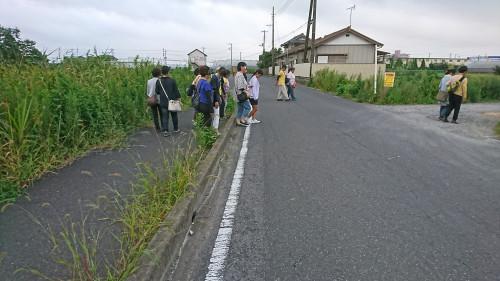 DSC_0631.JPG