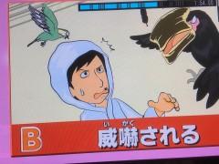 315放送TBSトコトン掘り下げ隊! 生き物にサンキュー!!01.jpg