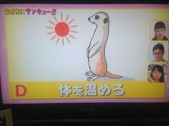 0426生き物にサンキュー (1).JPG