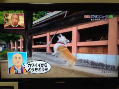 1028志村動物園01.JPG