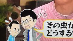 0615チコちゃん.JPG