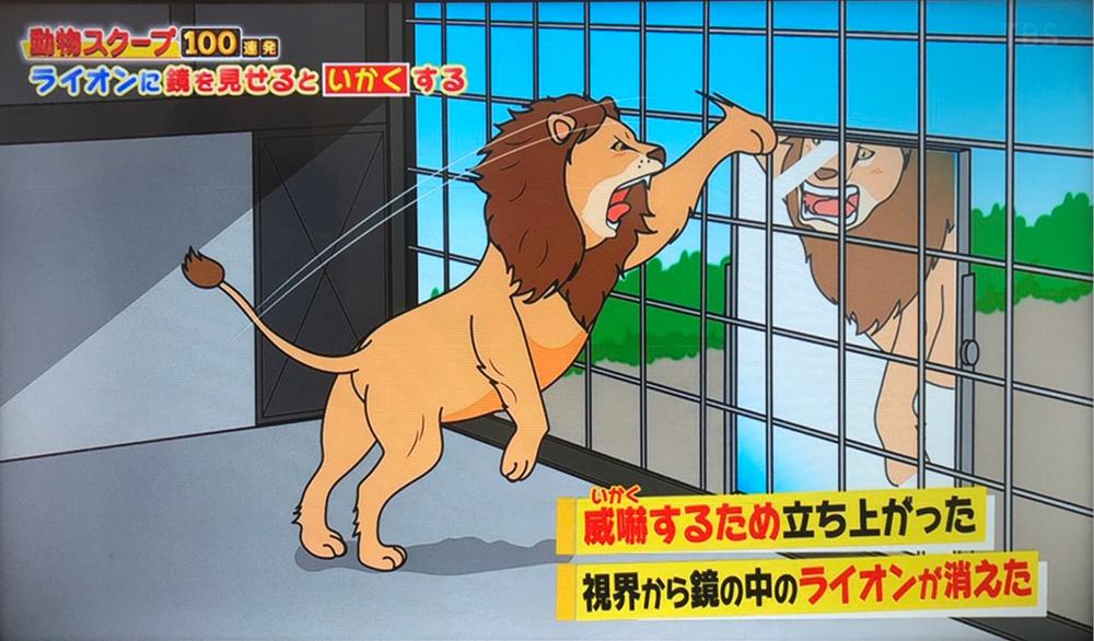 0729動物01.jpg