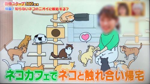 1014動物スクープ05.jpg