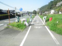 ボランティア活動写真1.JPG
