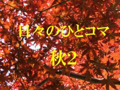 IMG_4867.jpg