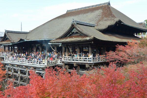 リサイズしwebサイトに適した大きさになった京都清水寺の写真