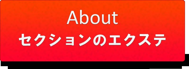 横浜エクステ専門美容室セクション|アバウト
