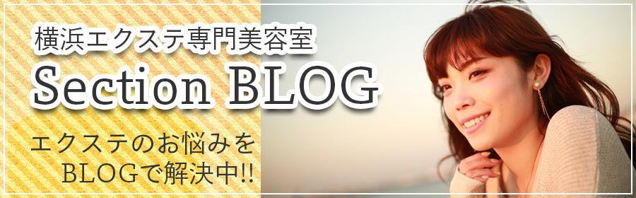 横浜エクステ専門美容院・美容室セクションBLOG