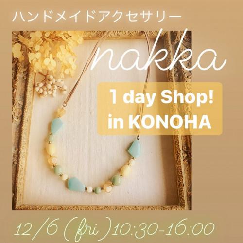 nakka 1day shop.jpg