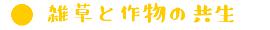 村木さん3.jpg