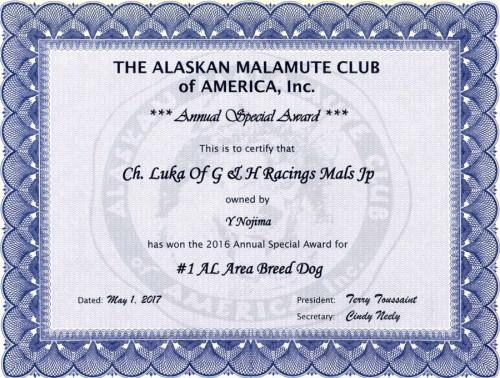 award20162.jpg