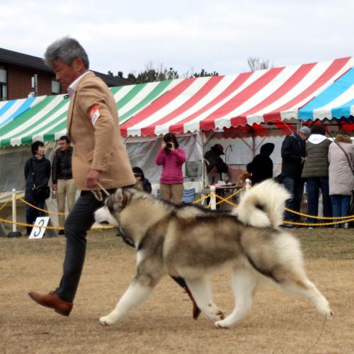 Fuga202002012.jpg