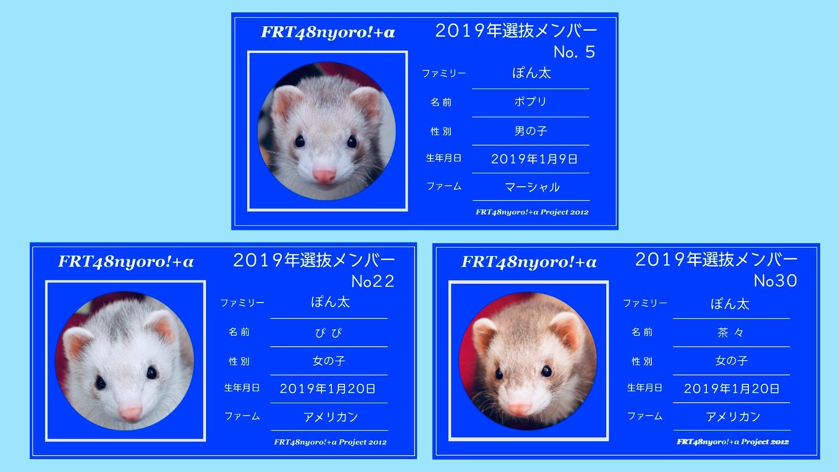 4FA6D64D-C9FA-44AD-9BE7-E4D929D35C67.jpeg
